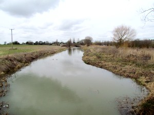 Fish Refuge at Stibbington