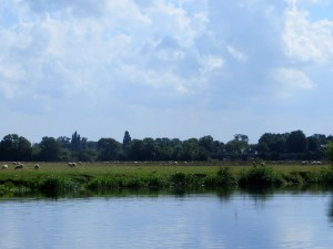 River Nene at Stibbington