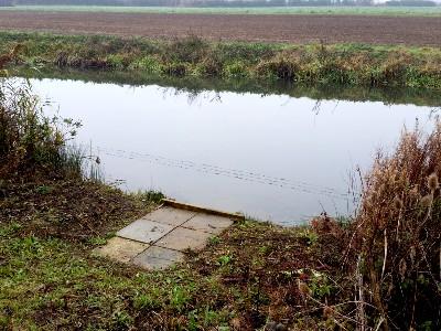 Fish Refuge at Stibbington