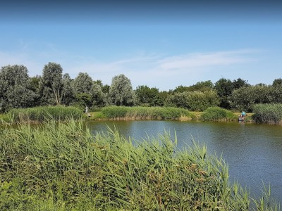Kingsland - Whittlesey
