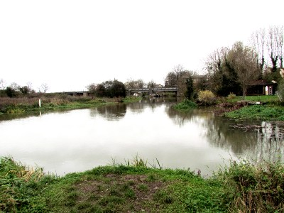 River Nene at Stibbington